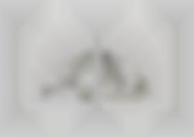 https://neuegestaltung.de/media/pages/clients/achim-riethmann-asr-09-16/18d1f45ddd-1604508333/riethmann_asr_innenseite_42_43_ng.jpg