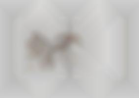 https://neuegestaltung.de/media/pages/clients/achim-riethmann-asr-09-16/6bf6a08ba4-1604508211/riethmann_asr_innenseite_108_109_ng.jpg