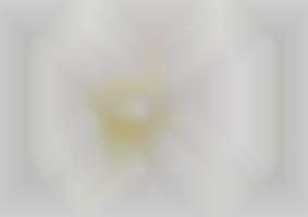https://neuegestaltung.de/media/pages/clients/achim-riethmann-asr-09-16/ccceb89944-1604508361/riethmann_asr_innenseite_6_7_ng.jpg