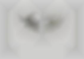 https://neuegestaltung.de/media/pages/clients/achim-riethmann-asr-09-16/ed5b3bc4ae-1604508325/riethmann_asr_innenseite_44_45_ng.jpg