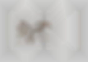 https://neuegestaltung.de/media/pages/clients/achim-riethmann-asr-09-16/fb33cb3cde-1604508211/riethmann_asr_innenseite_108_109_ng.jpg